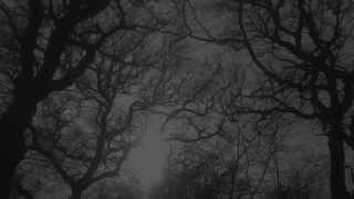 Darkthrone - Lesser Men (taken from The Underground Resistance)