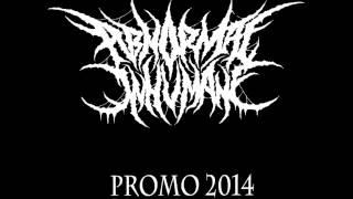 ABNORMAL INHUMANE - Promo 2014 [Full Demo]