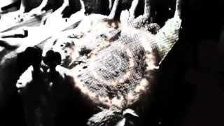 """BLOCKHEADS - """"Follow the Bombs"""" (Official Music Video)"""