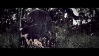 AMORPHIS - Hopeless Days (OFFICIAL MUSIC VIDEO)