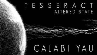 TESSERACT - Calabi Yau (Album Track)