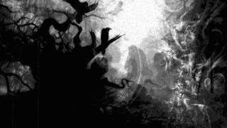 SOULSKINNER - Album Teaser 2014