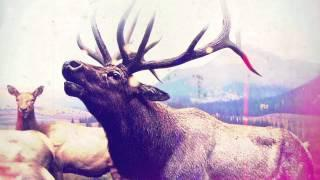 """RED FANG - """"Blood Like Cream"""" (Official Track)"""
