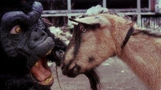 """The Black Dahlia Murder """"Goat of Departure"""" (OFFICIAL VIDEO)"""