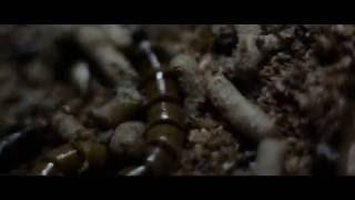 Lacuna Coil July 11, 2016