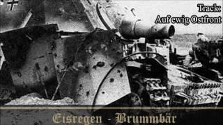 EISREGEN - Brummbär Full EP